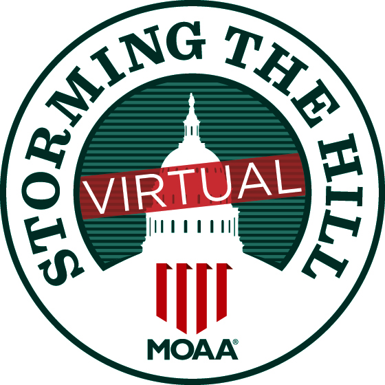 virtual-storm-logo-square-560x560.jpg